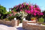 DIMITRA STUDIOS, Rooms to let, Kastraki, Naxos, Cyclades