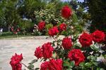 Plakias Villas Thymari & Anemos, Вила, Without Street, Lefkogia, Rethymno, Crete
