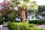 ANEEXE, Appartements à louer, Daratsos, Chania, Crete